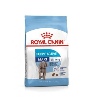 ROYAL CANIN Maxi Junior / Puppy Active