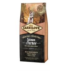 Carnilove Dog Salmon & Turkey for LB Puppies