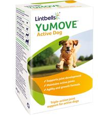 Lintbells YuMOVE Active pro psy