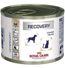 Royal Canin VD Cat/Dog konz. Recovery